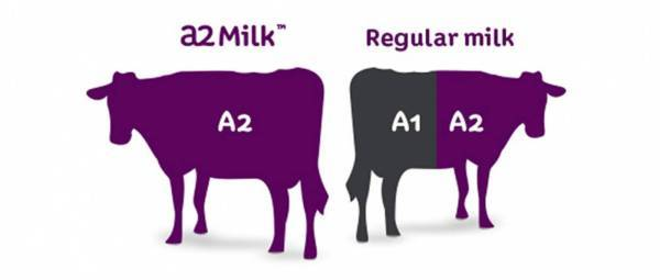 a2-milk-difference